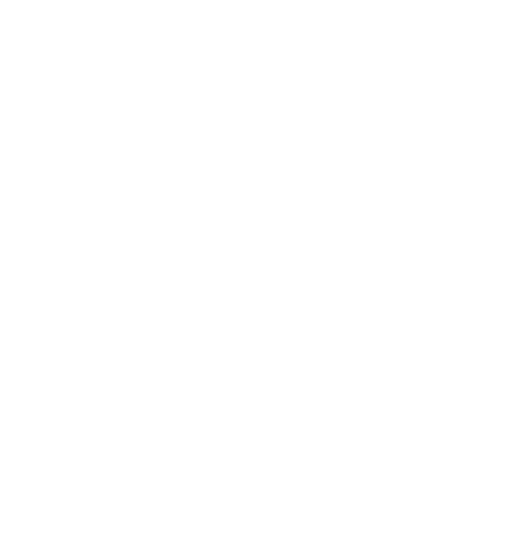 Maxi Logo weiß